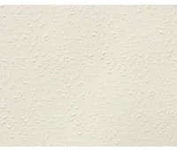 "Бумага ""Roma""с рельефным рисунком, А4, 220 г, шампанское"
