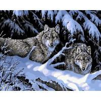 """Картина по номерам """"Волки в зимнем лесу"""""""