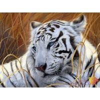 "Картина стразами ""Белый тигр"""
