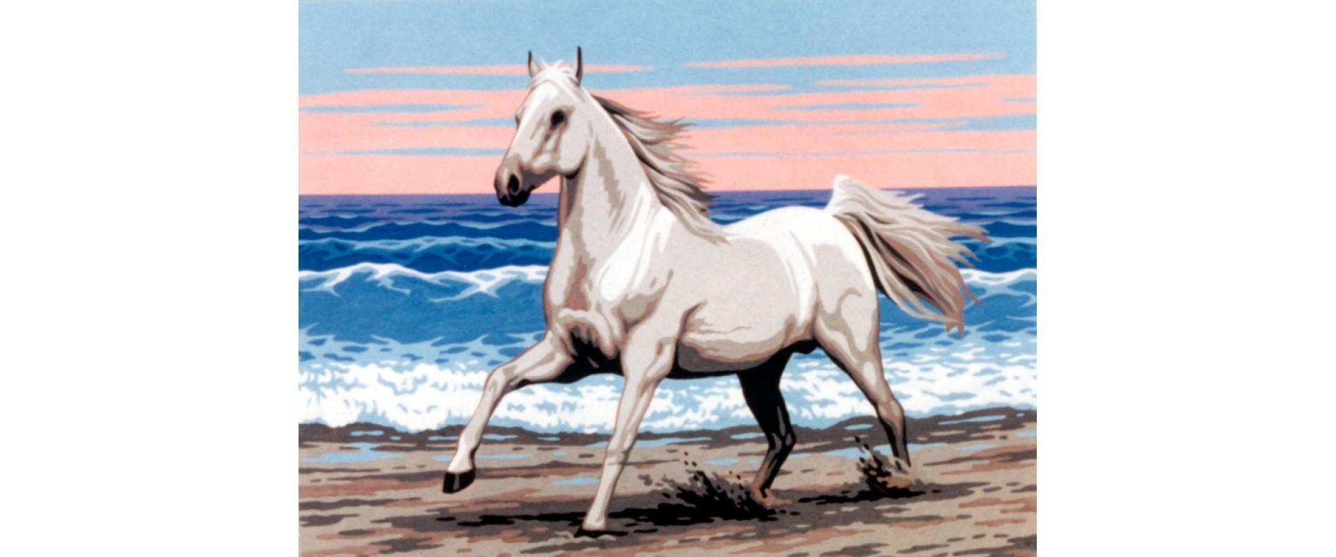 """Канва жесткая с рисунком """"Белая лошадь на морском берегу"""""""
