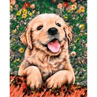 "Картина по номерам ""Веселый щенок"""