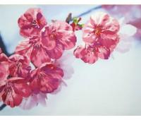 """Набор для вышивания """"Краски весны"""""""